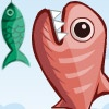 play Piranha Bite Attack game