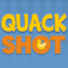 playing Quack Shot game