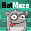 playing Rat Maze game