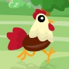 play Run Chicken Run game