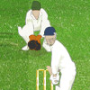 play The Ashes Cricket 2009 game